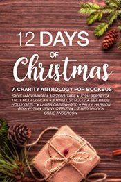 12 days of christmas2